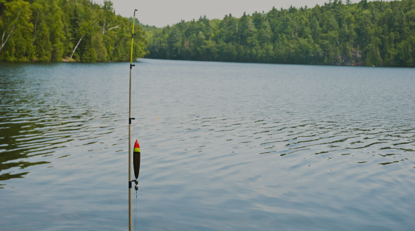 Three Reasons Why You Should be Using Online Renewals at Your Fishing Club